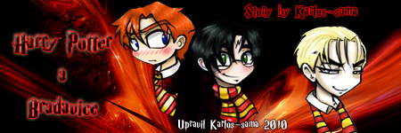 Harry Potter a Bradavice (2)